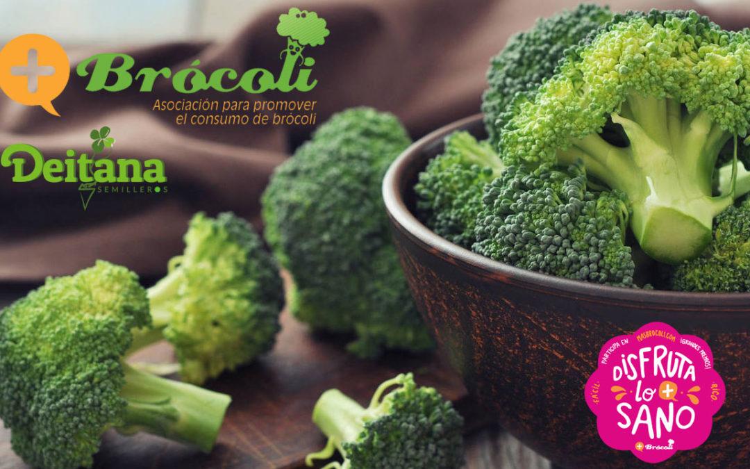 Brócoli, un placer saludable