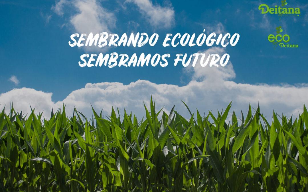 Semilleros ecológicos | Semilleros Deitana