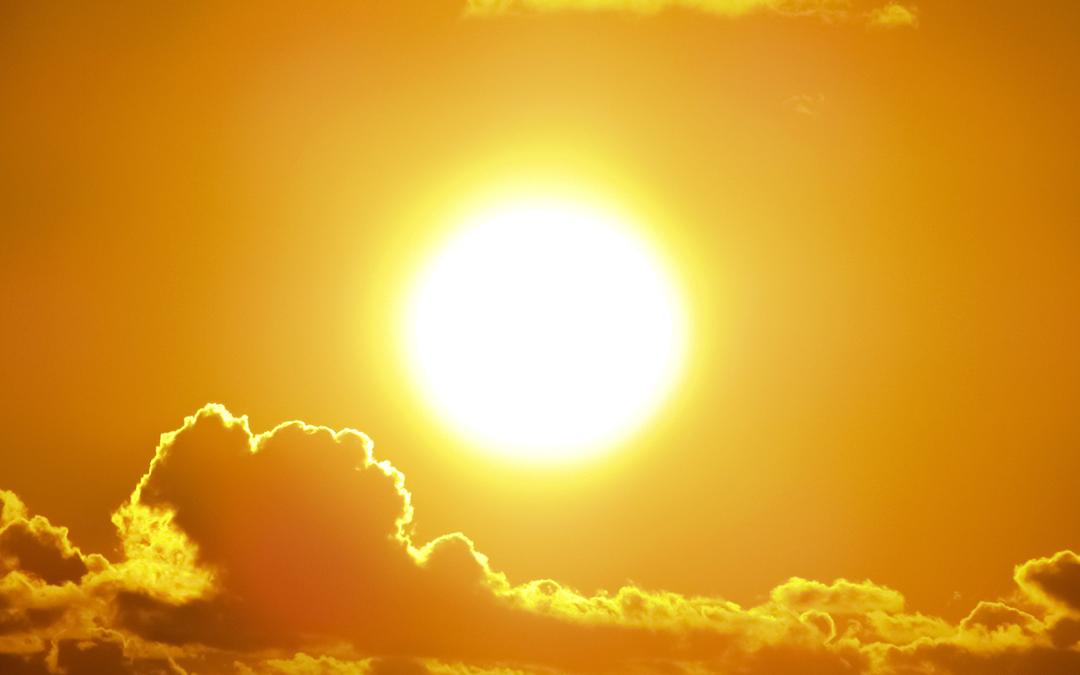 Solarización de suelos